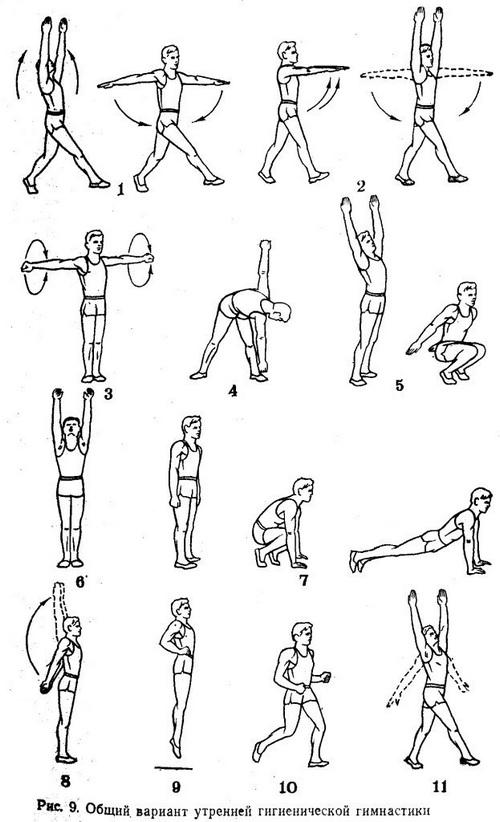 Рисунки общего варианта комплекса утренней гимнастики